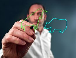 Business man draws the stock market bull and bear